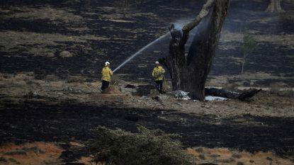 Zwaarste regenval in jaren voorspeld voor New South Wales, waar nog altijd 60 brandhaarden woeden