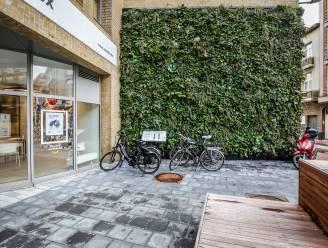 Hoe krijg je meer groen in een druk bebouwd centrum? Simpel, je maakt je tuin verticaal