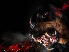 Partij voor de Dieren eist opheldering over 'falende aanpak' vechthonden
