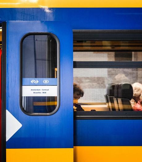 Treinverkeer tussen Tilburg en Eindhoven weer op gang na aanrijding met hond