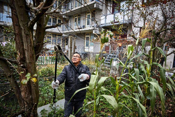 De sloop lijkt onafwendbaar, maar Tony Matias gaat door het het snoeien van zijn tuin.