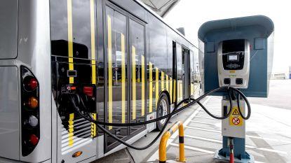 """België hinkt achterop op vlak van e-bussen: """"Gebrek aan politieke moed"""""""