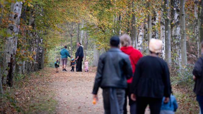 """Ook groendomein De Averegten wordt momenteel overspoeld door wandelaars: """"Wankel evenwicht tussen ontspanning voor mensen en rust voor natuur"""""""