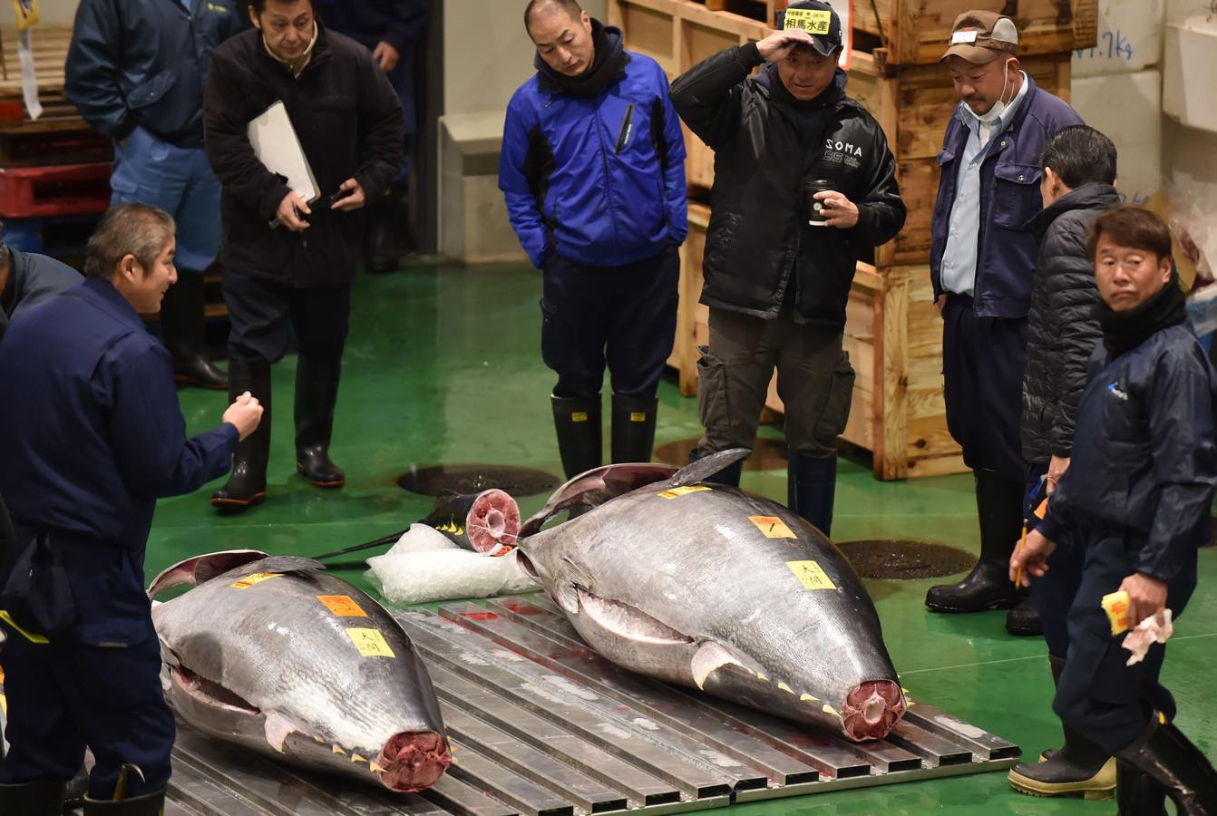 Handelaars verzamelen zich om de enorme tonijn van 278 kilo op de beroemde vismarkt in Tokyo in Japan.
