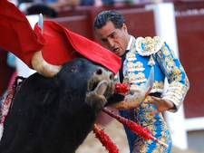 Stier doorboort Spaanse matador bij stierengevecht