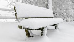 Daar is de winter: tot tien centimeter sneeuw in Hoge Venen