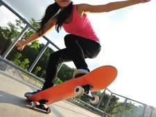 Mogelijk skatebaan en voetbalkooi in Sluis