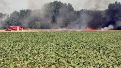 Alle hens aan dek voor grote weidebrand bij Leuven