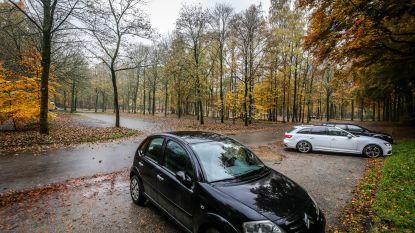 Nieuw onthaalgebouw, betere parking en nieuwe paden in Bulskampveld