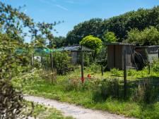 Moet de natuur de ruimte krijgen in Aalst, of juist recreatie?