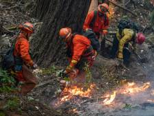 """La Californie ravagée par le feu: """"Nous n'avons rien vu de tel depuis des années"""""""