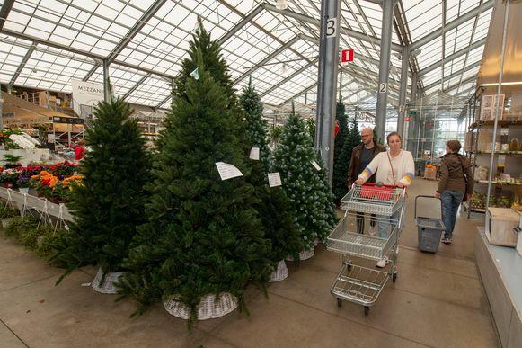 Bij tuincentrum Van Uytsel in Kontich zijn er al kerstbomen te koop