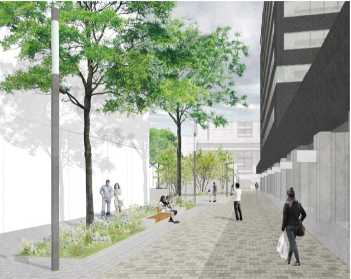 Volwassen bomen op de route tussen Primark - links - en de nieuwe winkeltjes onder het stadskantoor.