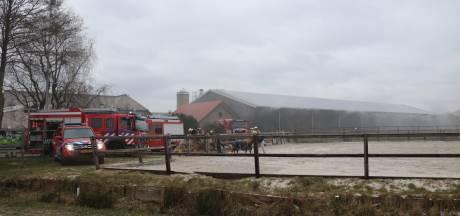 Duizenden kippen omgekomen bij brand in schuur Scherpenzeel