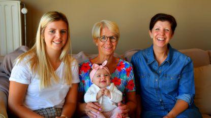Kleine Cilou zorgt voor viergeslacht in Maldegem en Lievegem