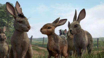 BBC introduceert 'aaibare' versie van traumatiserende film 'Watership Down', maar is dat wel een goed idee?