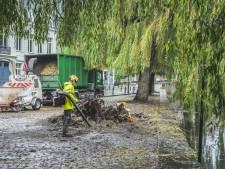 Groendienst heeft handen vol met opruimen van afgeknakte treurwilg aan de Lievekaai