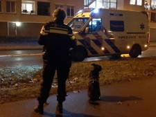 Voetganger met hond gewond bij aanrijding, scooterbestuurder rijdt door