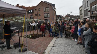 Vredesboom herdenkt 100 jaar Wapenstilstand