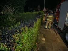 Coniferenhaag vermoedelijk in brand gestoken in Dieren