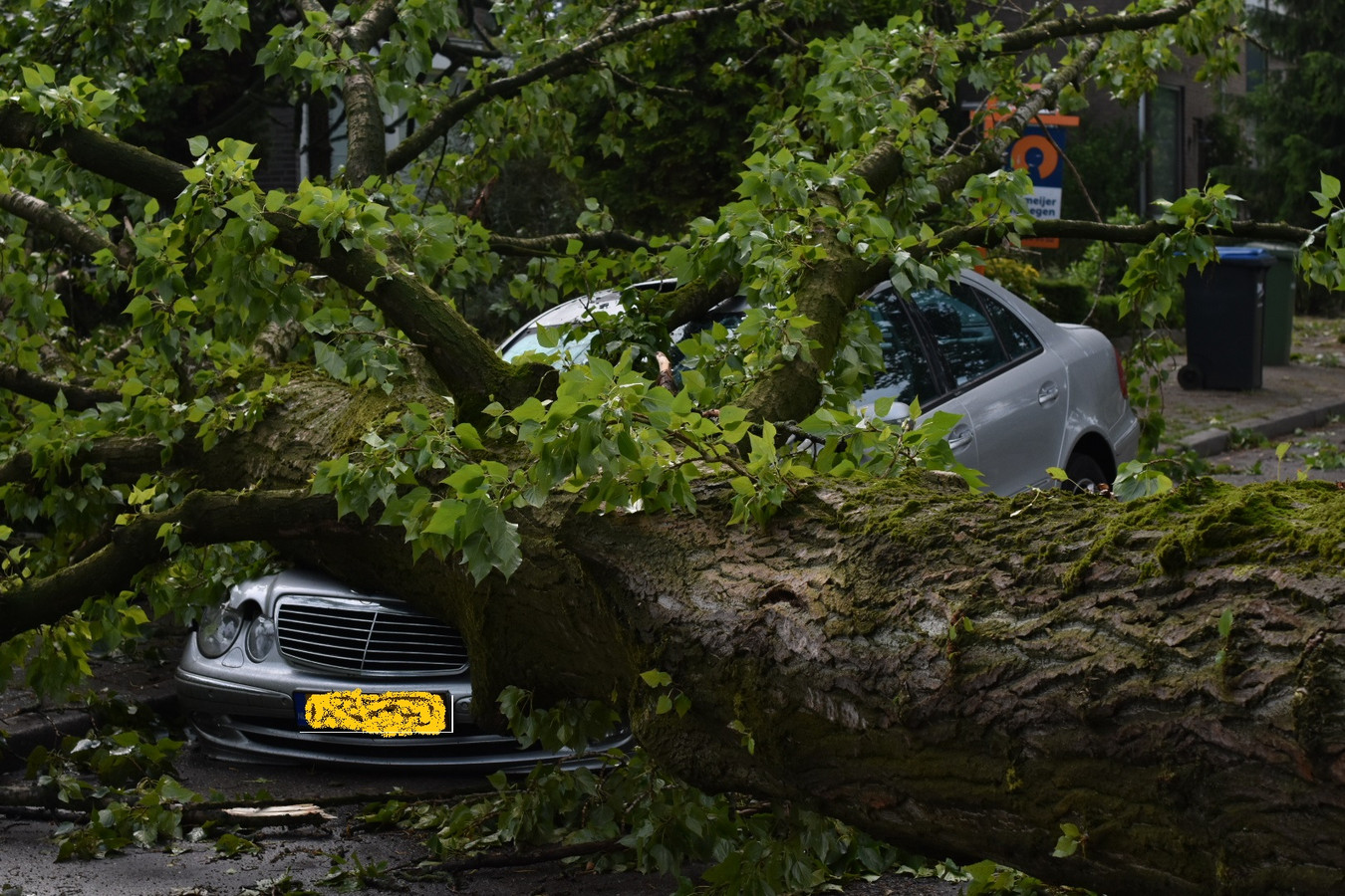 Een dikke boom is op een auto in Neerbosch-Oost gevallen tijdens de storm gisteravond.