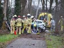 Auto klapt frontaal tegen een boom bij Heeten: bestuurder ernstig gewond naar het ziekenhuis