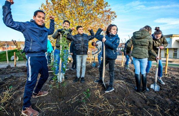 Door een minibos op het schoolplein komen stadskinderen meer in contact met de natuur