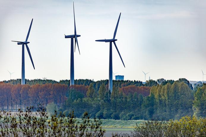 Windmolens langs de Groene Dijk, gezien vanaf de toren van de N.H. Kerk van Zevenbergen, in de richting Etten-Leur.