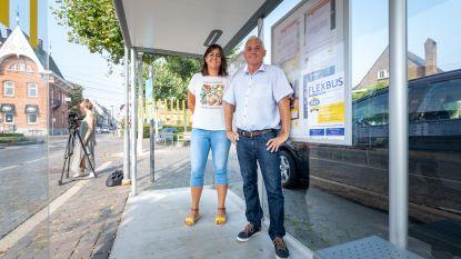 Bornembus maakt plaats voor Vlaamse primeur: de Flexbus