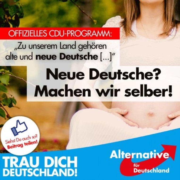 Ook het Duitse AfD riep in een eerdere kiescampagne op meer kinderen te krijgen.