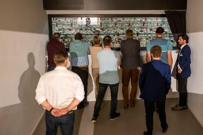 De opening van de nieuwe HyCare-pluimveestal van MS Schippers werd donderdag druk bezocht.