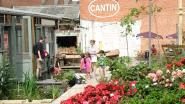 """Opening buurtcafé is startschot voor heropleving oude Crownfabriek: """"Blikfabriek moet hele buurt boost geven"""""""