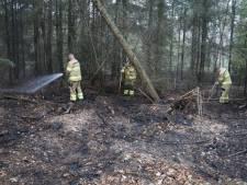 Bosbrandje bij Ginkelse Heide in Ede