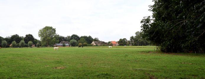 OOSTERHOUT - Bewoners van de Heilige Driehoek willen dat het open karakter van het gebied gehandhaafd blijft. Op de foto het uitzicht vanaf de Leijsendwarsstraat.