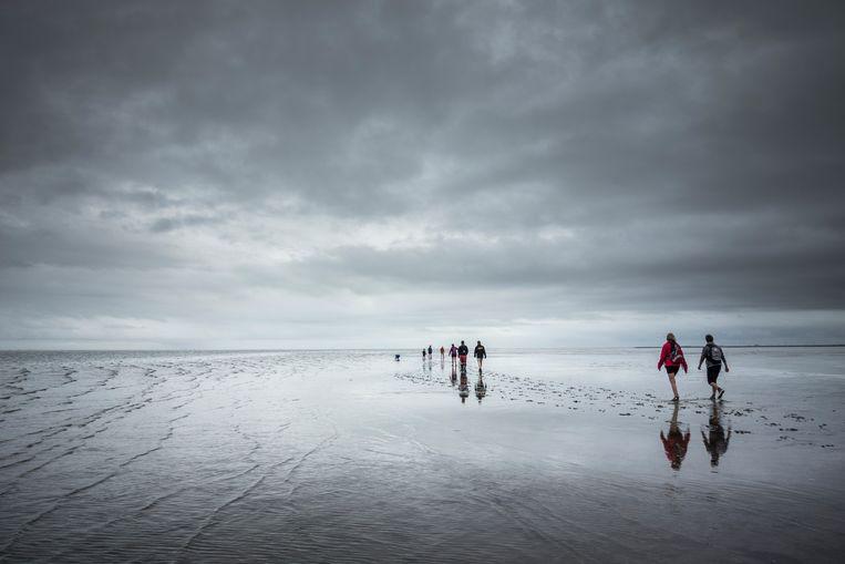 Wadlopers tijdens hun wandeling over de drooggevallen bodem van de Waddenzee. Beeld Hollandse Hoogte / Kees van de Veen