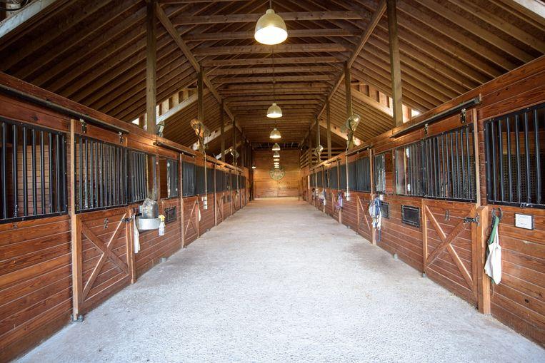 In de stallen is ruimte voor zeker 12 paarden.