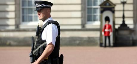 Nederlander bij Buckingham Palace opgepakt om 'taser'-sleutelhanger