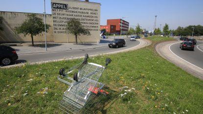 Wie parkeerde winkelkar op kluifrotonde Appel?