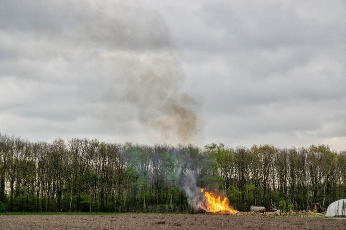 Vuur en rook in Hilvarenbeek.