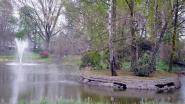 Eiland in Gemeentepark wordt in mei verwijderd