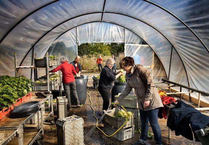 Éen andere coöperatie van herenboeren in Zuidoost-Brabant is onlangs van start gegaan in Soerendonk, hier op de foto.