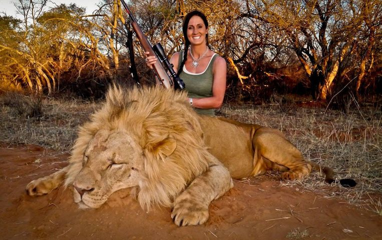 """Fervent jager Melisssa Bachman maakte veel mensen boos door naast een dode leeuw te poseren. Bachman plaatste deze foto op Twitter, met deze tekst: """"An incredible day hunting in South Africa! Stalked inside 60 yards on this beautiful male lion ... what a hunt!"""" Inmiddels is haar account verwijderd."""