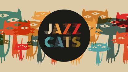 VIDEO. Nieuw festival: Jazz Cats bezet muziekcentrum Track