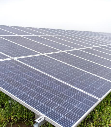 Appelbomen weg, zonnepanelen terug: 50 voetbalvelden aan landbouwgrond in Zeewolde straks zonnepark