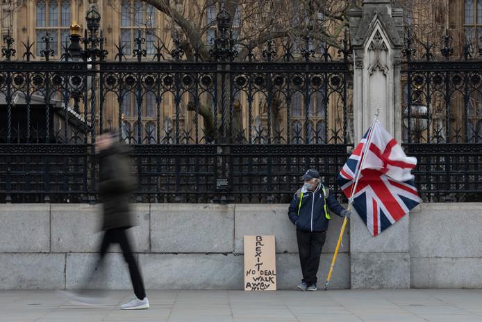 Een protestan van de Brexit in Londen. Foto ter illustratie.