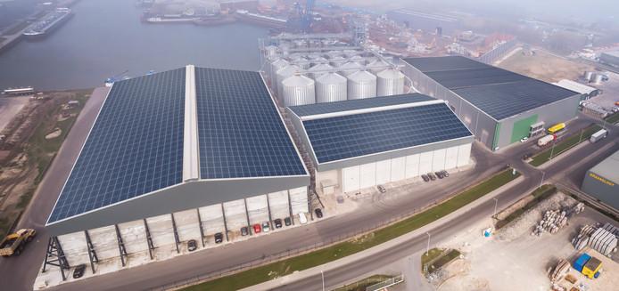De daken van Graansloot in Kampen op een gefotoshopte schets van de loodsen en silo's, voor aanleg van de zonnepanelen.