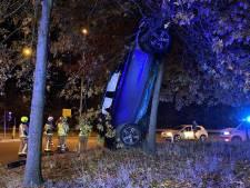 Bizar: Belgische automobilist rijdt zijn auto rechtop tegen boom