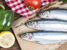 Frisse Start: is vette vis gezond?