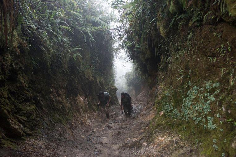 FARC-rebellen op hun terugtocht vanuit de jungle Beeld Stephen Ferry