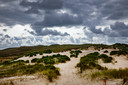 De duinen van Schoorl